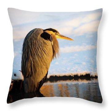 Blue Heron Resting Throw Pillow