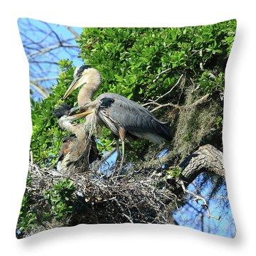 Throw Pillow featuring the photograph Blue Heron Series Baby 1 by Deborah Benoit