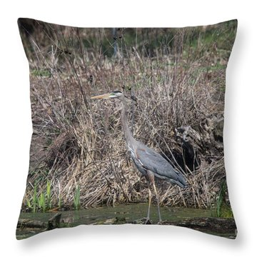 Throw Pillow featuring the photograph Blue Heron Stalking Dinner by David Bearden