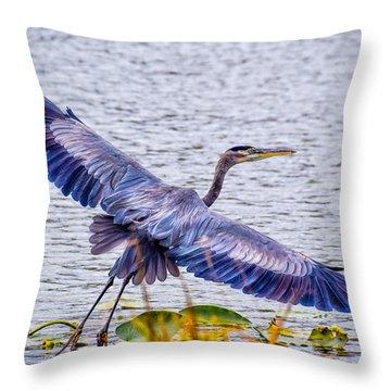 Blue Heron  Take Off  Throw Pillow
