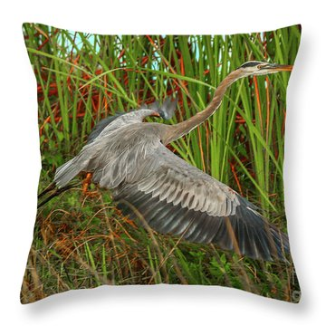 Blue Heron Take-off Throw Pillow