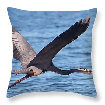 Blue Heron Wingspan Throw Pillow