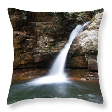 Throw Pillow featuring the photograph Blue Hole In Spring #1 by Jeff Severson