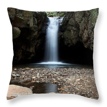 Throw Pillow featuring the photograph Blue Hole In Spring #2 by Jeff Severson