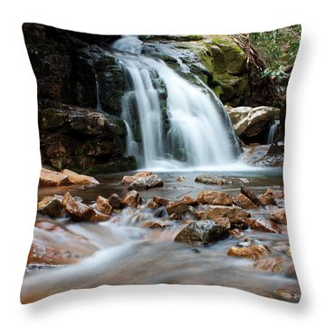Throw Pillow featuring the photograph Blue Hole In Spring #3 by Jeff Severson