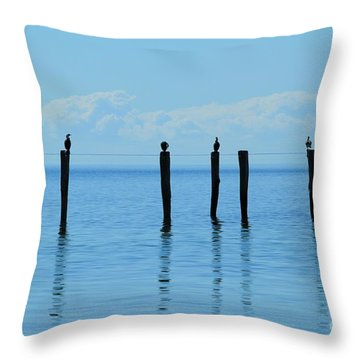 Throw Pillow featuring the photograph Blue Horizon by Stephen Mitchell