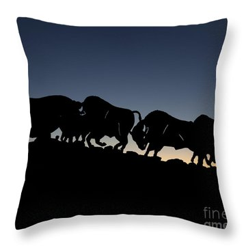 Throw Pillow featuring the photograph Blue Hour 24x20  by Melany Sarafis