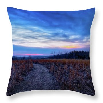 Throw Pillow featuring the photograph Blue Hour After Sunset At Retzer Nature Center by Jennifer Rondinelli Reilly - Fine Art Photography