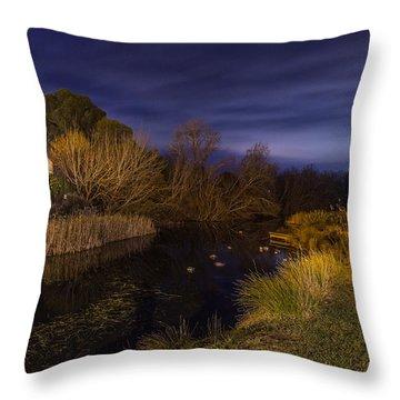 Blue Hour At The Richmond River Throw Pillow