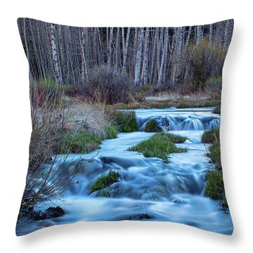 Blue Hour Streaming Throw Pillow by James BO Insogna