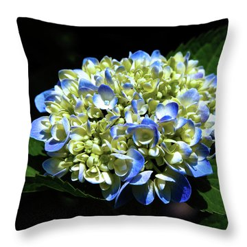 Blue Hydrangea Onstage 2620 H_2 Throw Pillow