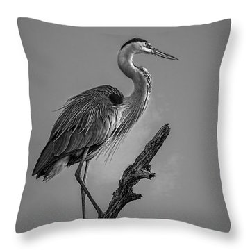 Blue In Black-bw Throw Pillow