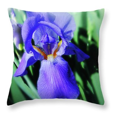 Blue Iris 2 Throw Pillow