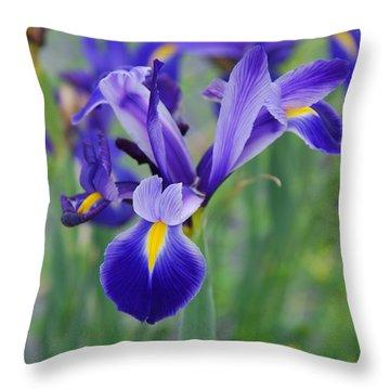 Blue Iris Flower Throw Pillow