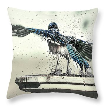 Blue Jay Bath Time Throw Pillow