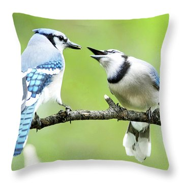 Blue Jay Parent Feeding Juvenile Throw Pillow