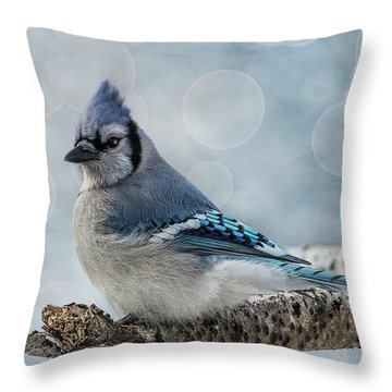 Throw Pillow featuring the photograph Blue Jay Perch by Patti Deters