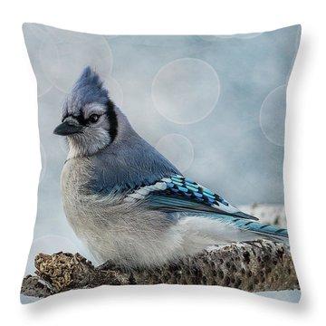 Blue Jay Perch Throw Pillow