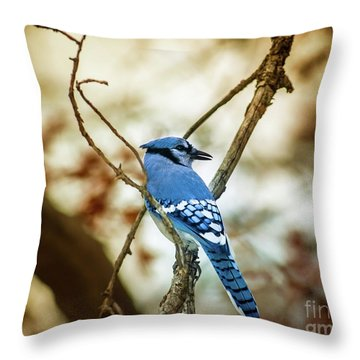 Blue Jay Throw Pillow by Robert Frederick