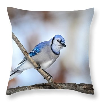 Singing My Song Throw Pillow