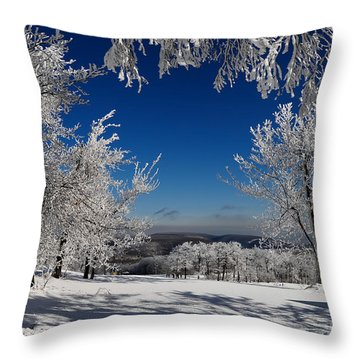 Blue Knob Throw Pillow
