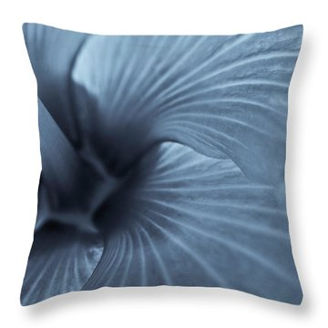 Throw Pillow featuring the photograph Blue Lagoon by Tom Vaughan