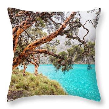 Blue Lake In The Cordillera Blanca Throw Pillow
