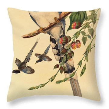 Blue Magpie, Urocissa Magnirostris Throw Pillow