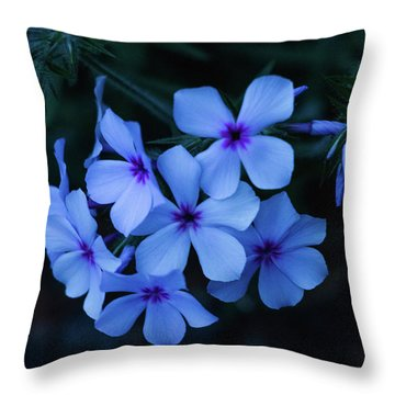 Throw Pillow featuring the photograph Blue Moon Phlox by Cristina Stefan
