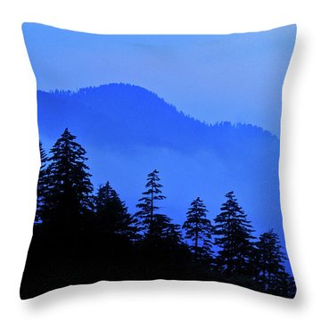 Throw Pillow featuring the photograph Blue Morning - Fs000064 by Daniel Dempster