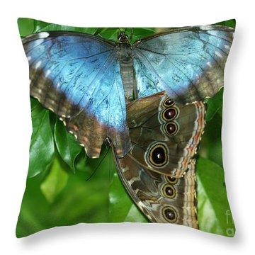 Blue Morpho Butterflies Throw Pillow by Sabrina L Ryan