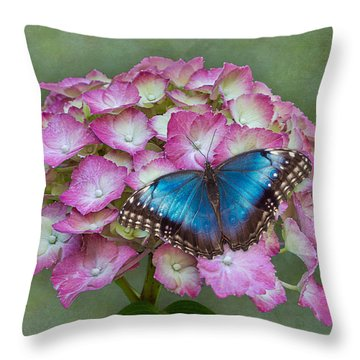 Blue Morpho Butterfly On Pink Hydrangea Throw Pillow
