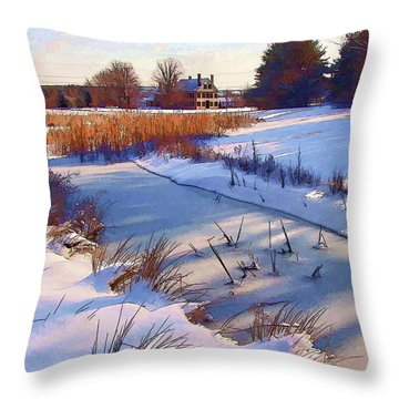 Blue Noon Throw Pillow by Betsy Zimmerli