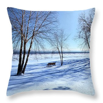 Throw Pillow featuring the photograph Blue On Blue by Phil Koch