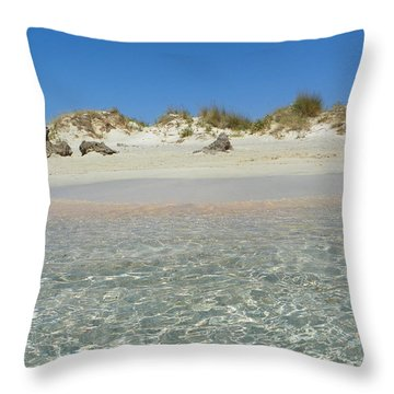 Blue On Blue Throw Pillow by Sannel Larson
