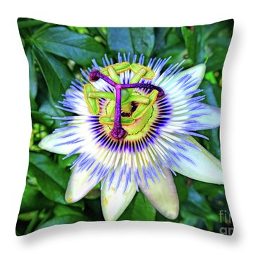 Blue Passion Flower Throw Pillow by Sue Melvin