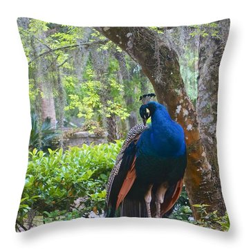 Blue Peacock  Throw Pillow by Joan Reese