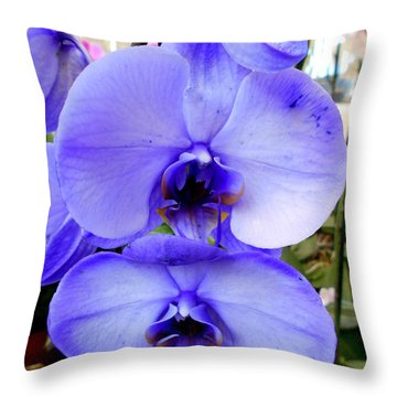 Blue Phalaenopsis Orchid Throw Pillow