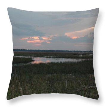 Blue Pink Throw Pillow