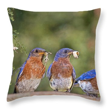 Blue Plate Lunch Special Throw Pillow by Bonnie Barry