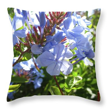Throw Pillow featuring the photograph Blue Plumbago by Mary Ellen Frazee