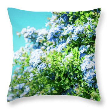 Blue Plumbago Maui Hawaii Throw Pillow by Sharon Mau