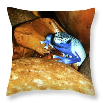 Throw Pillow featuring the photograph Blue Poison Dart Frog by Anthony Jones
