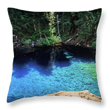 Throw Pillow featuring the photograph Blue Pool by Cat Connor