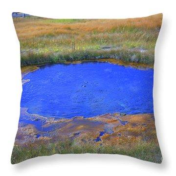The Eye In Yellowstone Throw Pillow