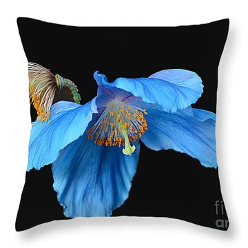 Blue Poppies Throw Pillow by Cindy Manero