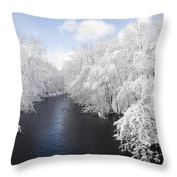 Blue Ribbon River Throw Pillow
