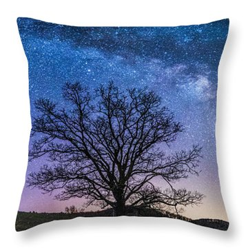Blue Ridge Milkyway Throw Pillow