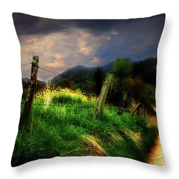 Throw Pillow featuring the photograph Blue Ridge Mountain Country Road by Gray  Artus