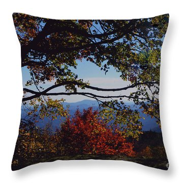 Blue Ridge Mountain View Throw Pillow by Debra Crank